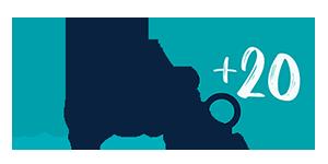Logo Ingenio(CSIC-UPV)